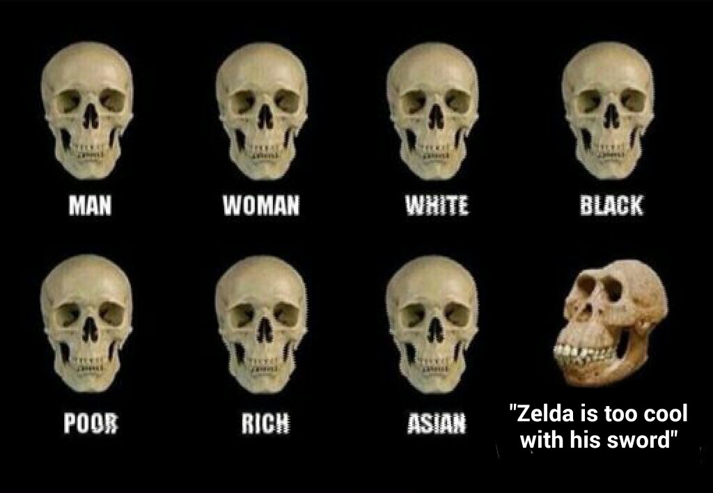 NON MOI C'EST LINK - meme