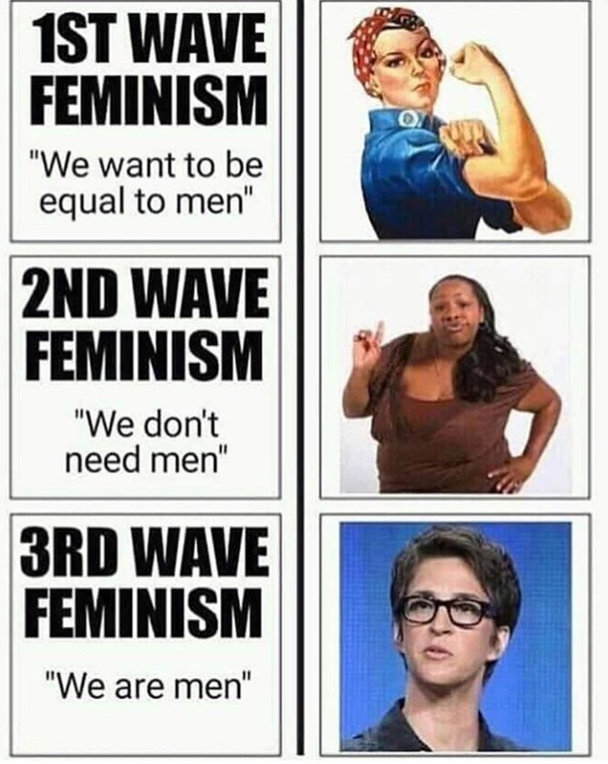 As a woman, I think Feminism ruined it for the rest of us.............. - meme