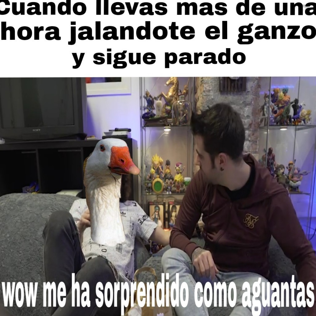Buen video - meme
