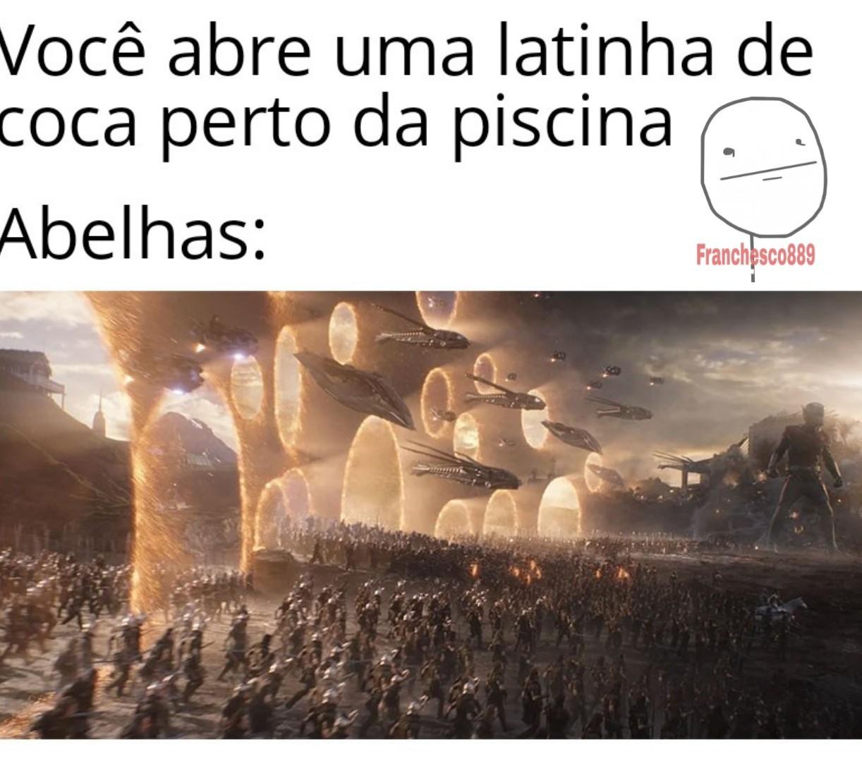 Abelhas - meme