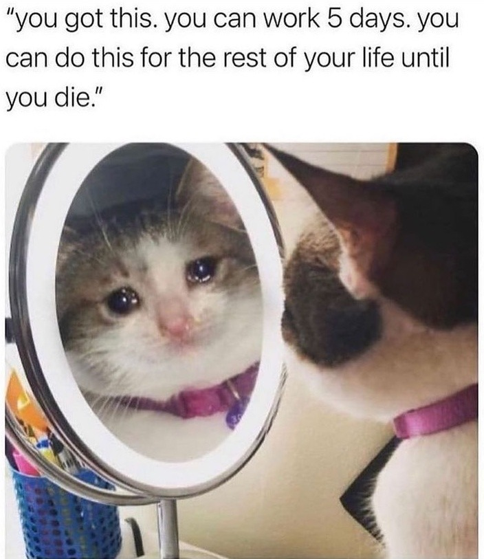 reality hurts - meme