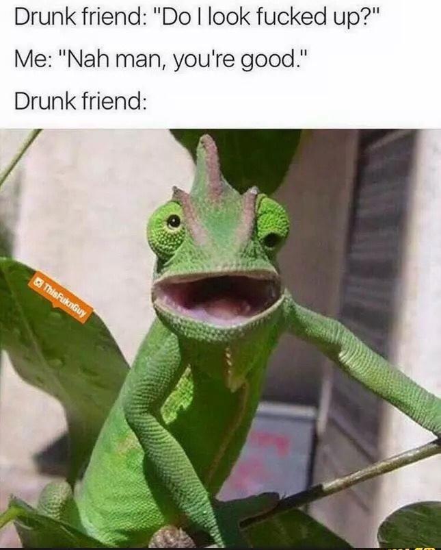 party night - meme