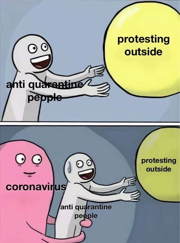 how do you protest staying inside - meme