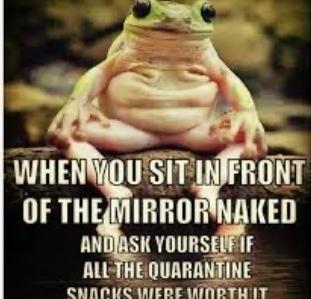 Frogs - meme