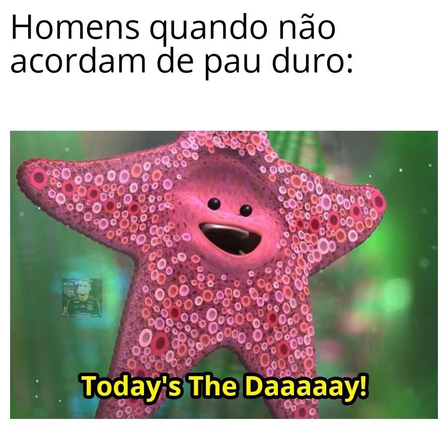 """""""Hoje é o dia"""", boa tarde - meme"""