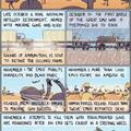 History of the emu wars