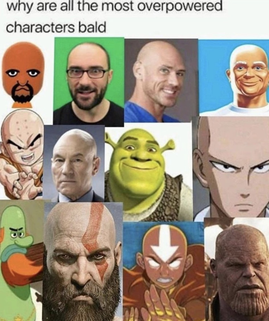 the baldness - meme