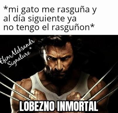 Lobezno inmortal XD - meme
