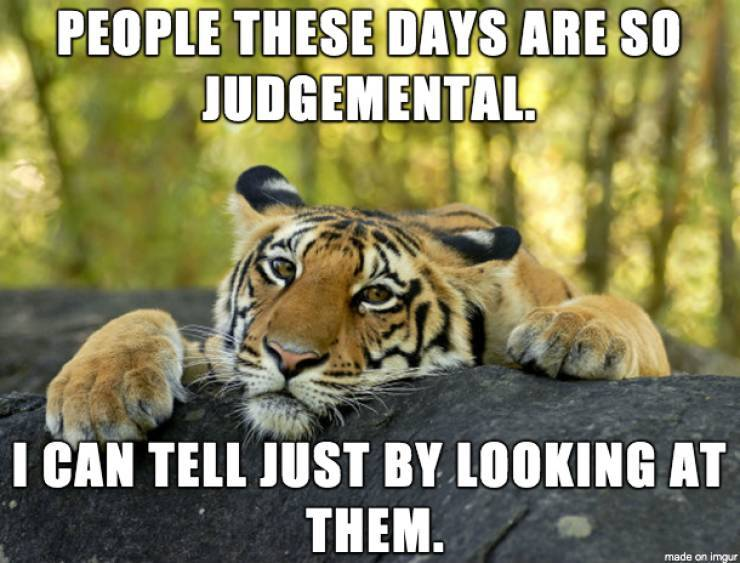 Tony the tiger says people are not that great. - meme