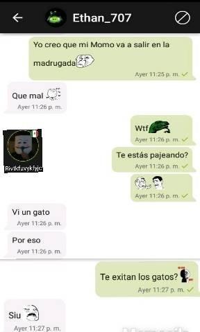 K pedo con el Ethan PD:somos los únicos que usamos el chat? - meme