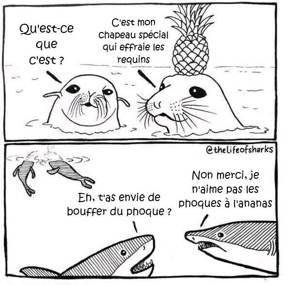 Un comic, plein de memes traduits aujourd'hui :)