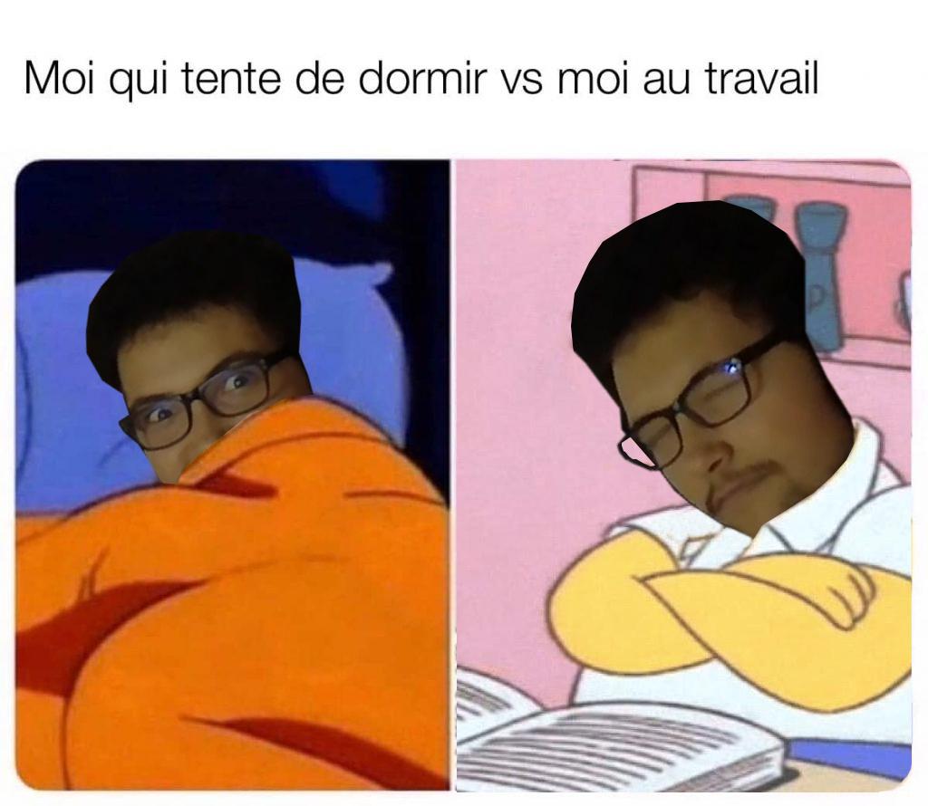 Dodo - meme