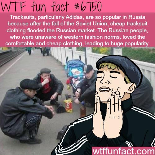 Why the slav uniform is so popular - meme