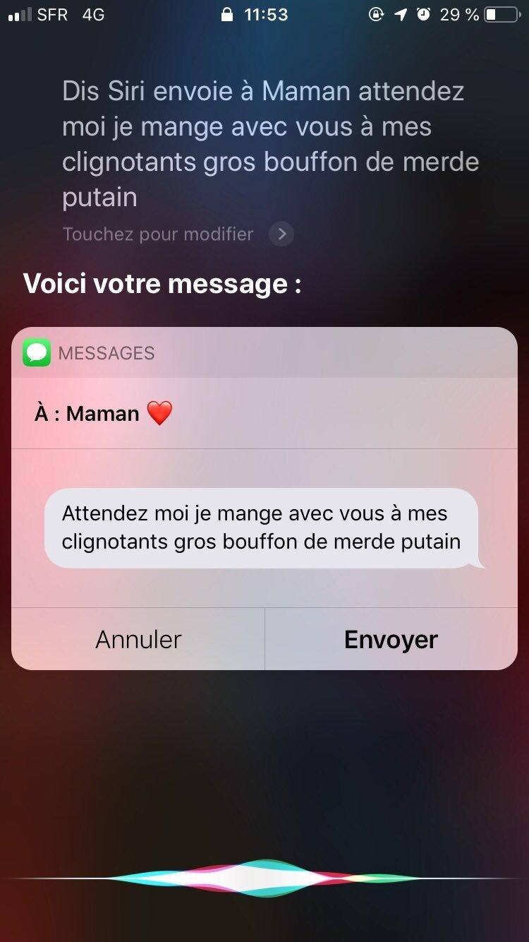 Envoyer un SMS avec Siri en conduisant @AlixMnds - meme