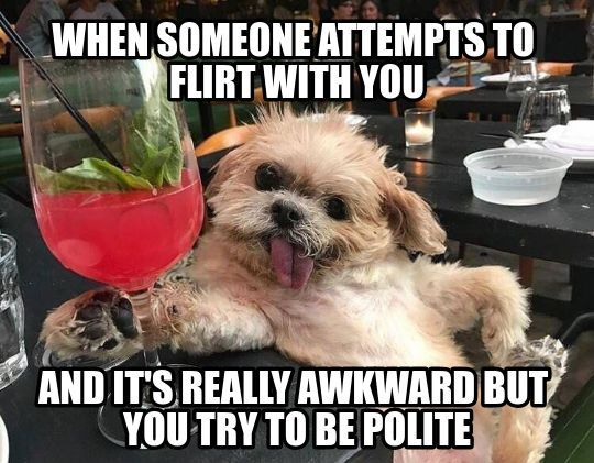Well at least you're polite. - meme