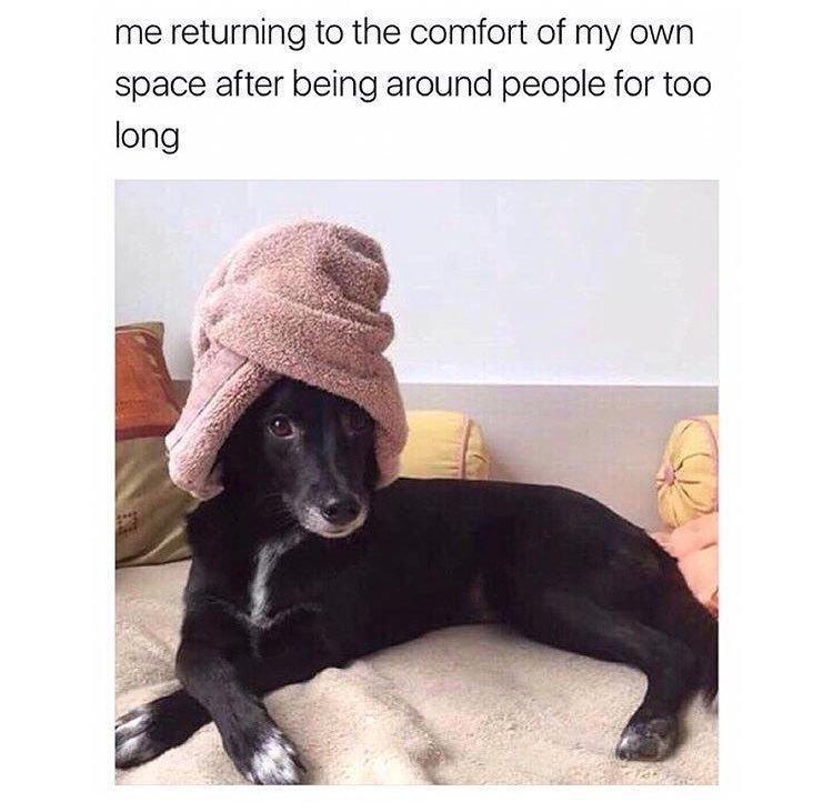 Comfort-Zone - meme