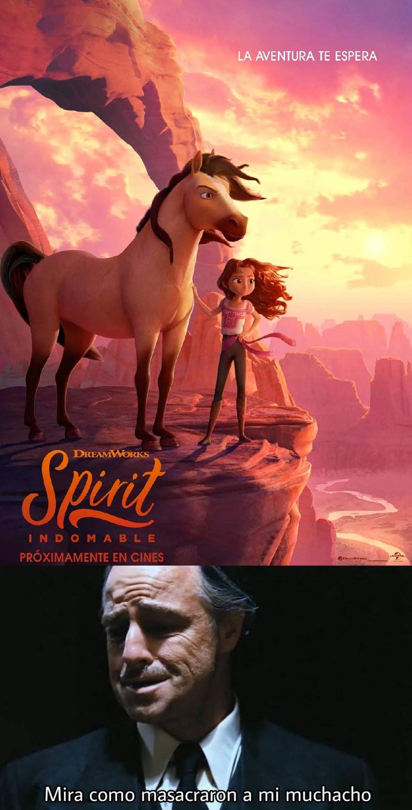 Spirit no se lo merecia :( - meme