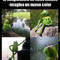 E verda