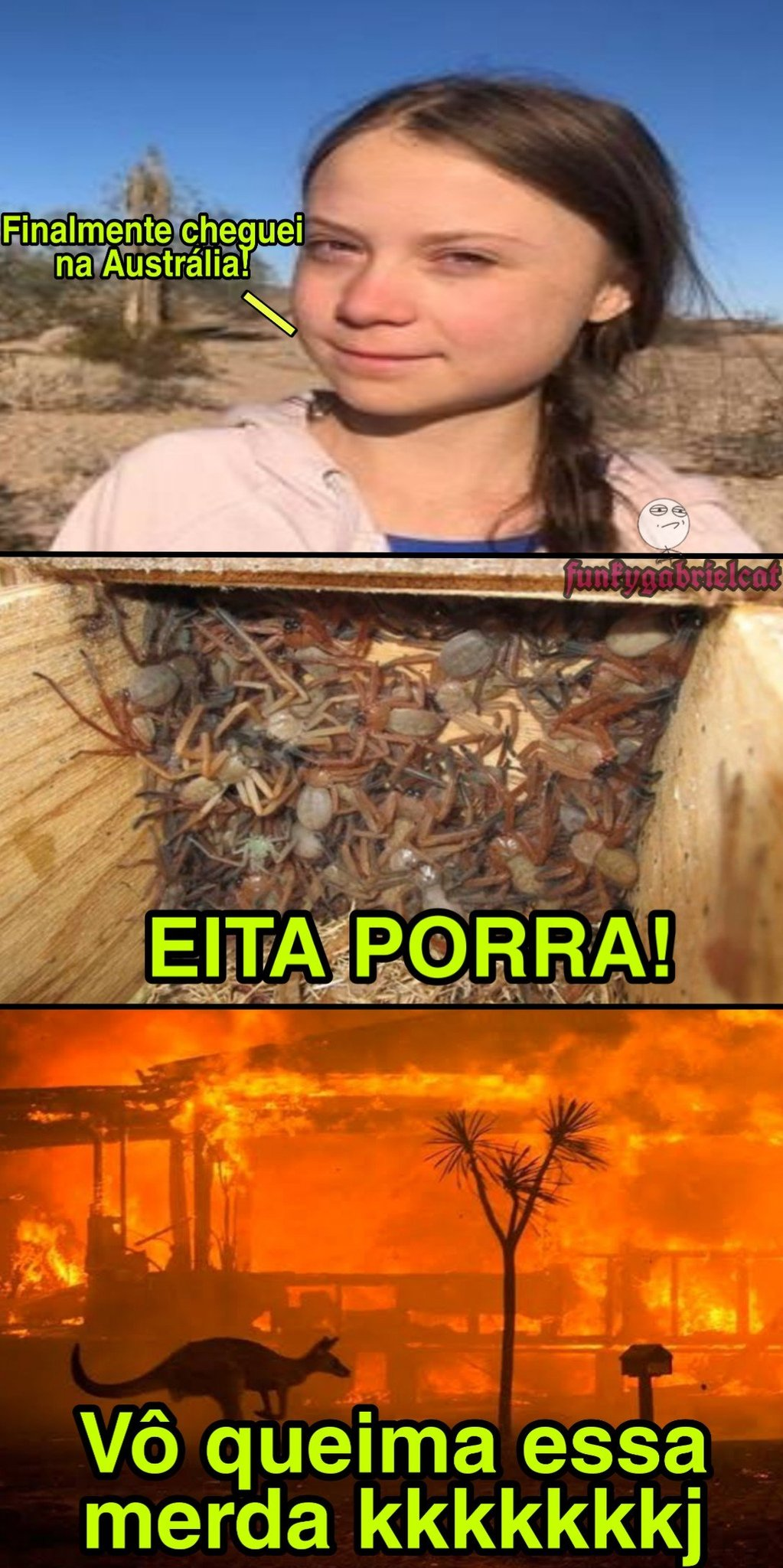 Edinaldo Pereira - meme