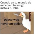 Peace was never a option