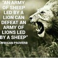 Amazing African proverb