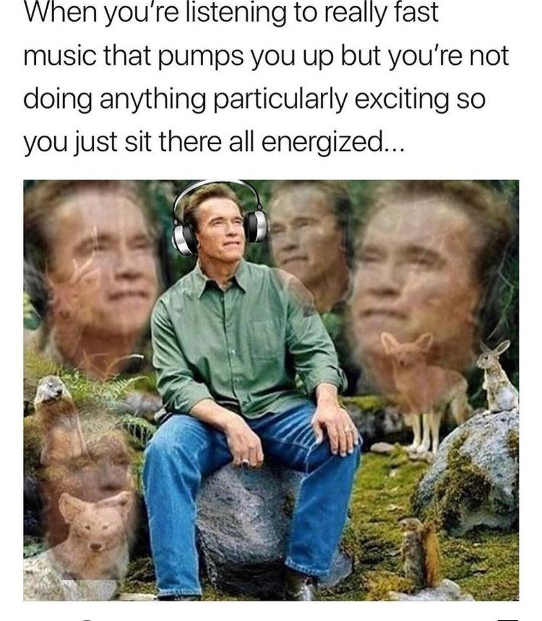 It's called Psytrance - meme