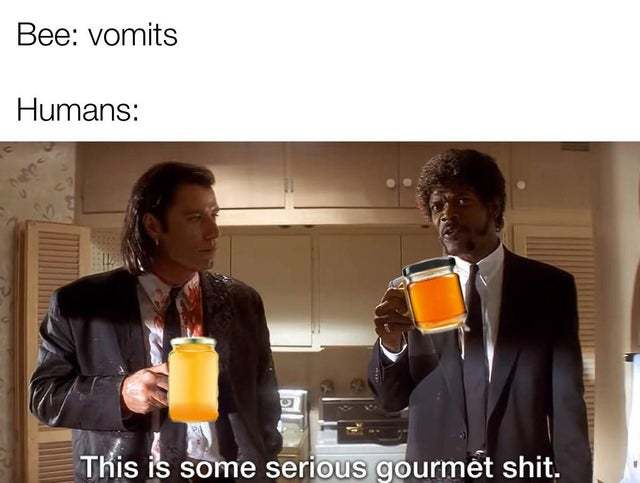 Honey is just bee vomit - meme