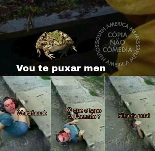 SAPO IMUNDO DO KRL - meme