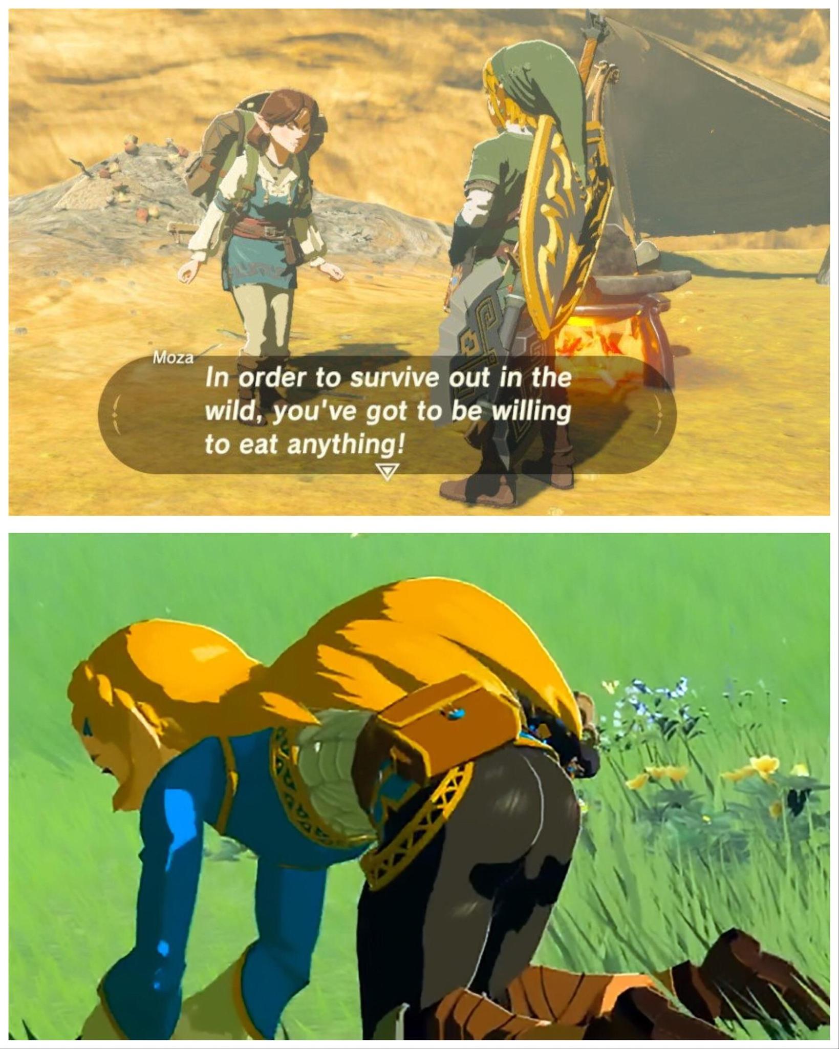 Para sobreviver na selva você tem que estar disposto a comer qualquer coisa - meme