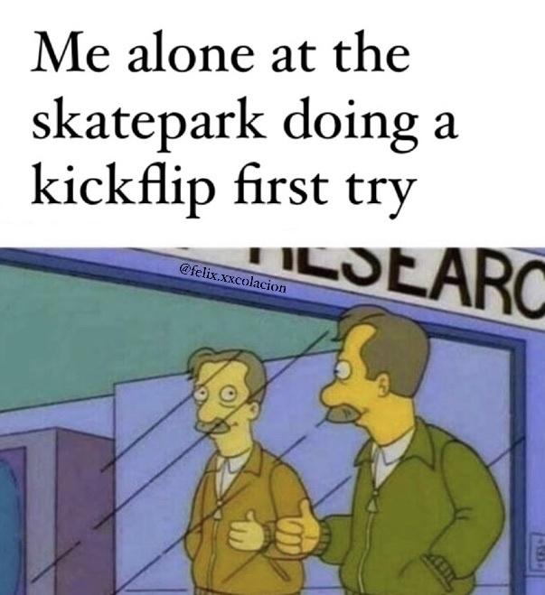sk8 is cool - meme