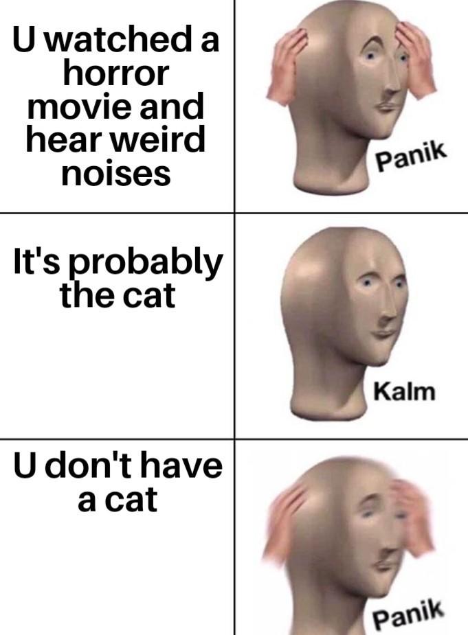 Panik!!! - meme