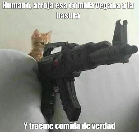 veganos con derecho - meme