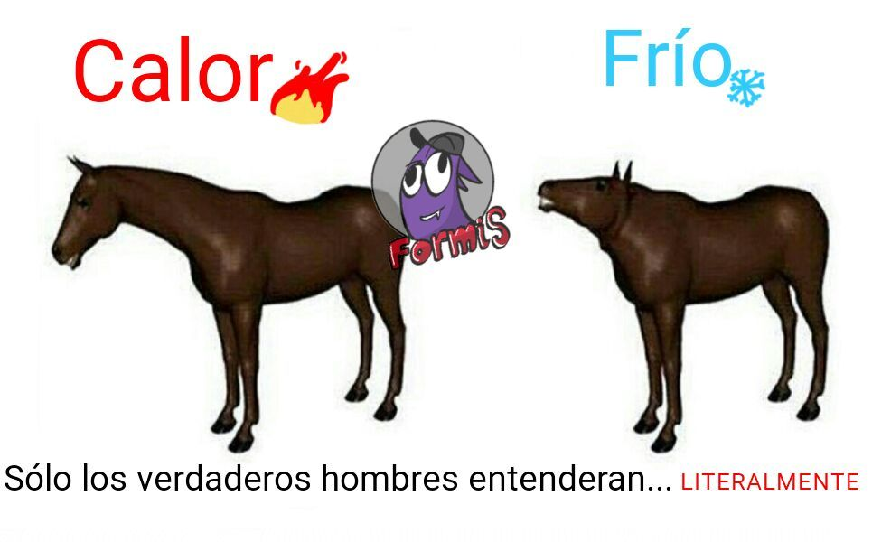 A jalarse el caballo (ORIGINAL) - meme