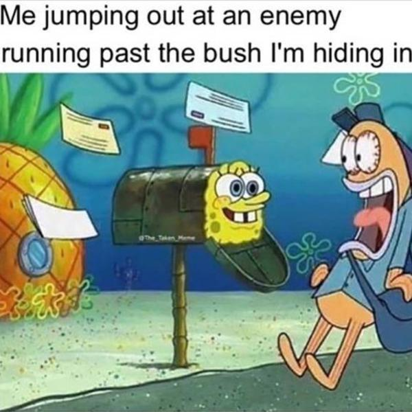 Fortnite noobs hide in bush - meme