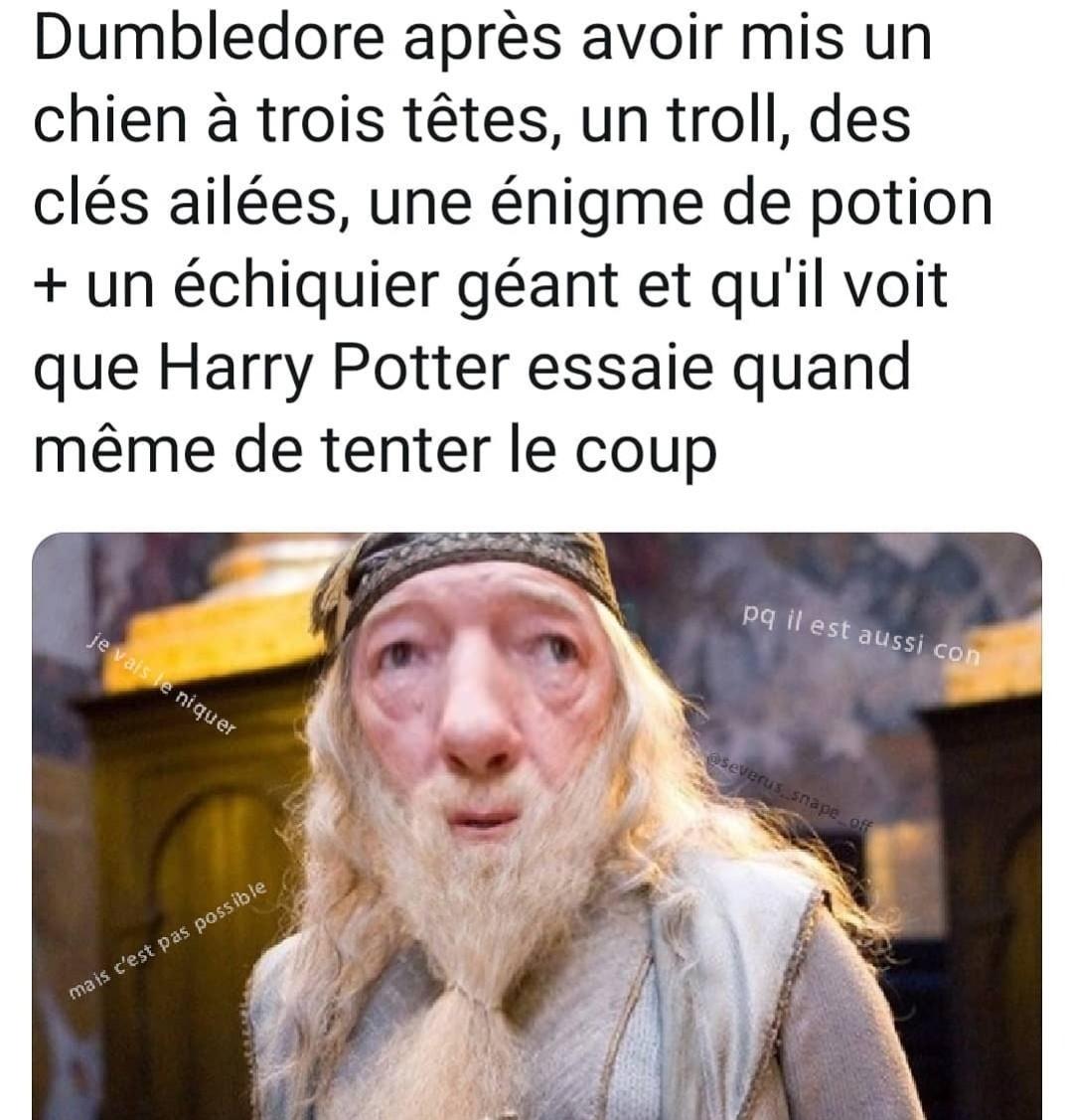 Harry peuteur - meme