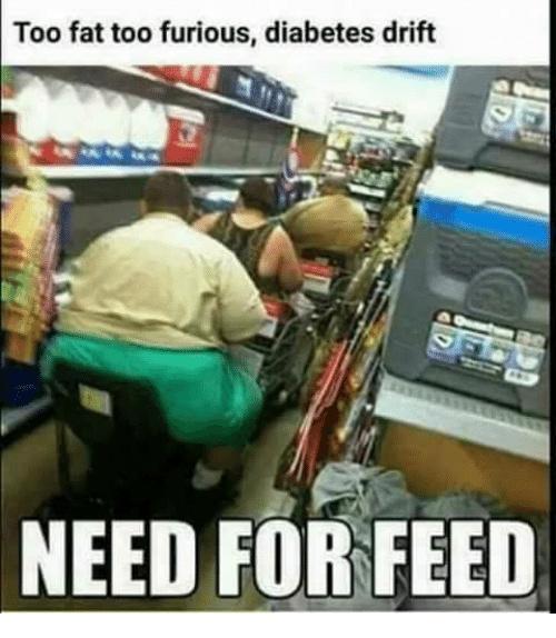 they seek the feed - meme