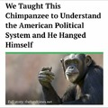 Le US politics