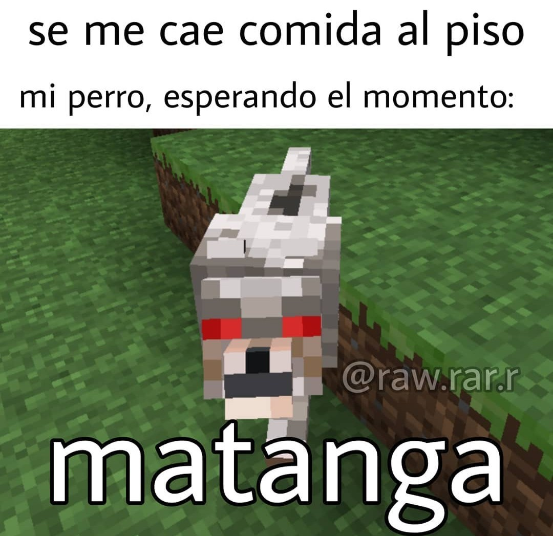 Errop - meme