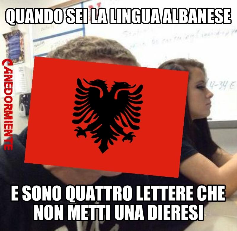 I veri albanesi capiranno - meme