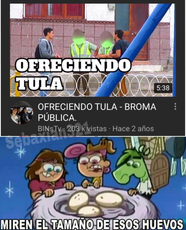 Tula = miembro reproductor masculino - meme