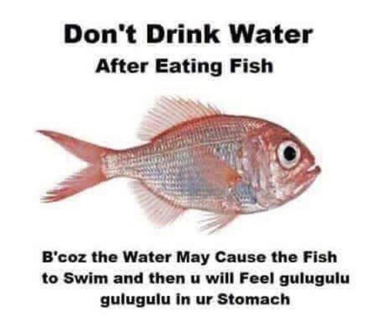 The fish - meme