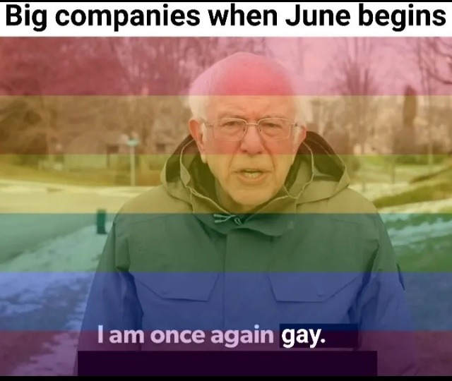 when the going gets tough, be gay - meme
