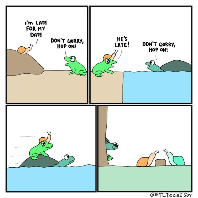 Snail memes