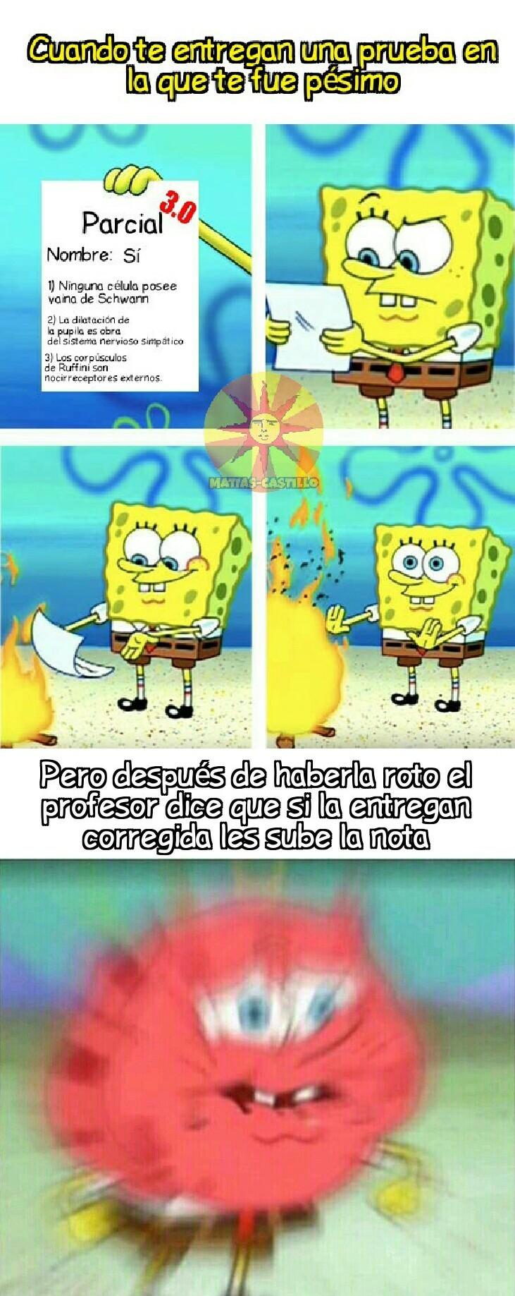 Ay, biología... - meme