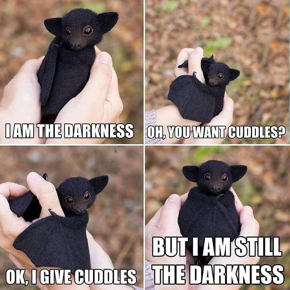 Don't mess with me, I know your weakness... - meme
