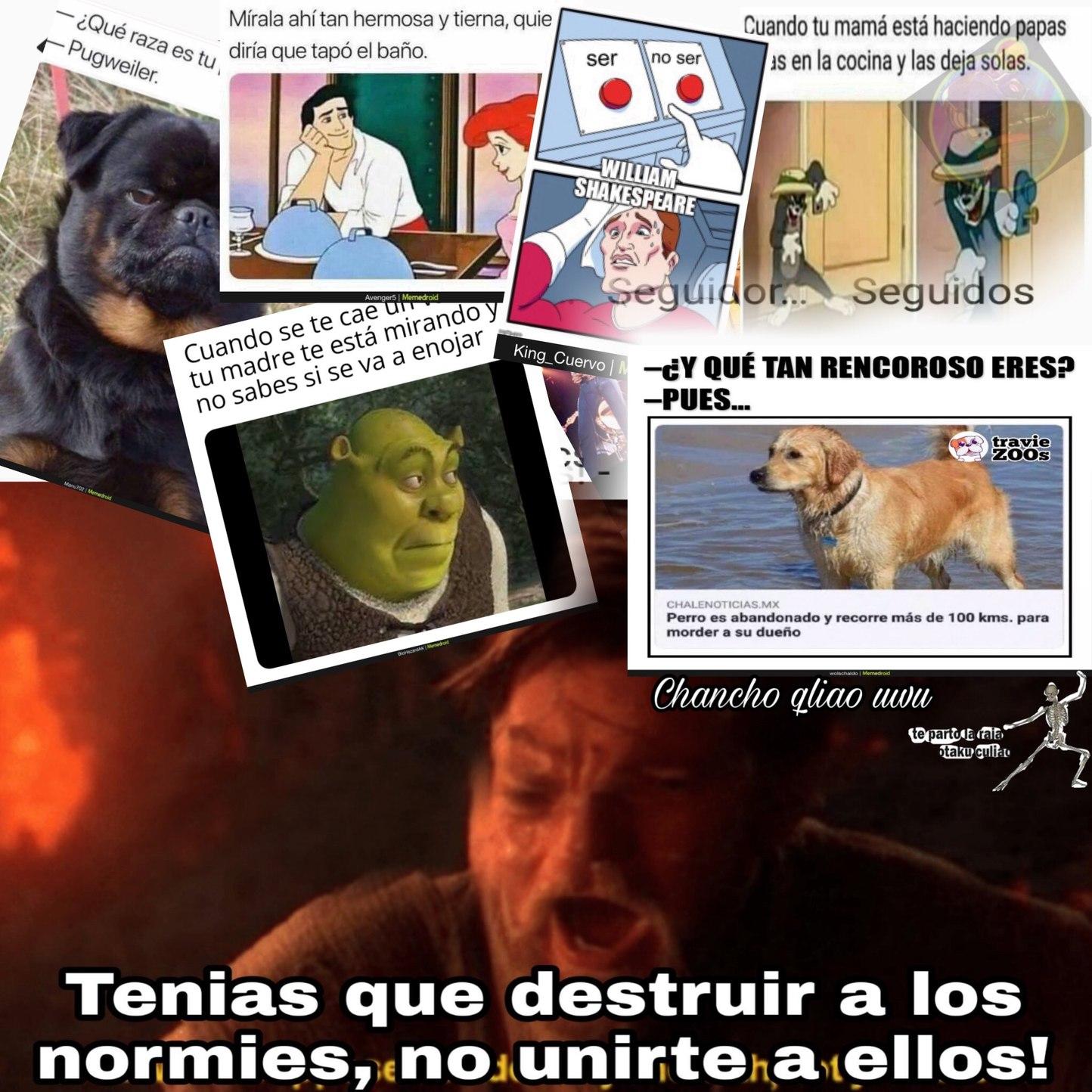 Normies y memes de Facebook >:[