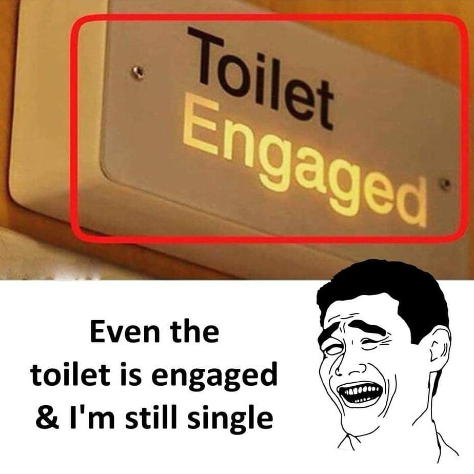Toilet engaged - meme