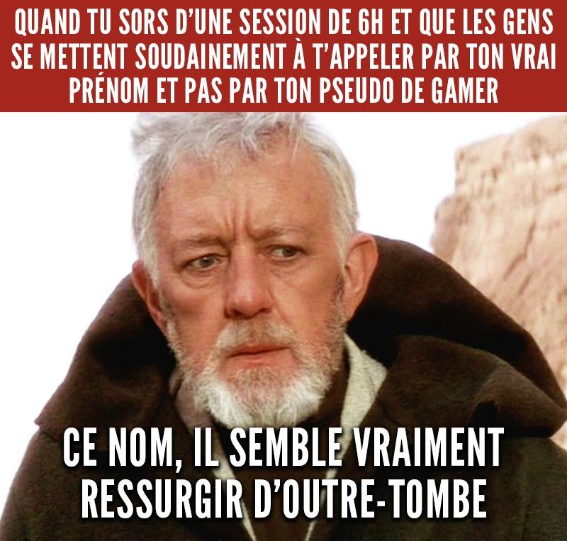 Gamer ne like - meme