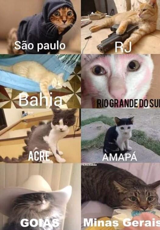 Faltou Tocantins - meme