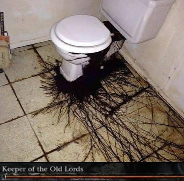 Cursed toilets pt2 - meme